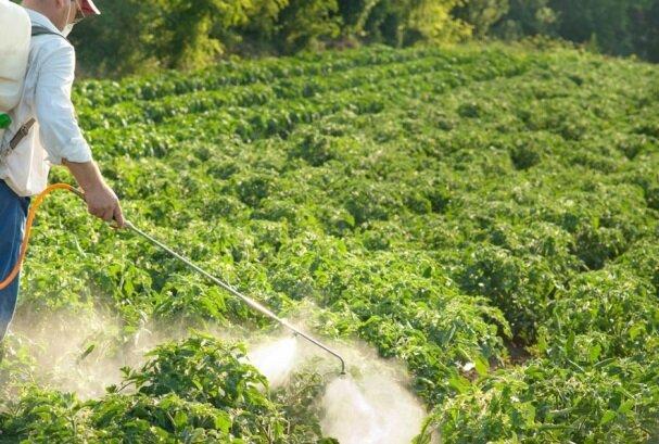 سموم کشاورزی ایرانی صادر می گردد