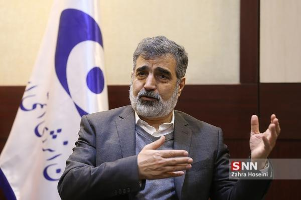 کمالوندی: تأخیر در لغو تحریم های ایران برای غربی ها زیان بیشتری خواهد داشت